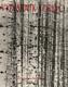 Výtvarník a dřevo. Pomocná kniha pro stud. zaměření řezbářství a tvarování hraček a dekorativních předmětů na stř. uměleckoprům. školách
