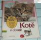 Kotě v domě - rady pro chovatele koček - jak zajistit spokojenost vaší kočky - co udělat pro její zdraví