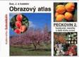 Obrazový atlas peckovin I - II (rozšířený o další druhy ovoce). 2, Odrůdy teplomilných peckovin, skořápkovin, maliníku, ostružiníku a netradičního ovoce