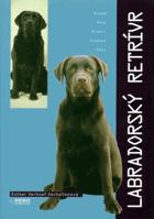 Labradorský retrívr - Labrador