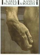 Kámen a bolest - román o Michelangelovi Buonarroti