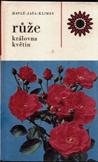 Růže, královna květin