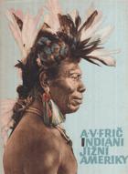Indiáni Jižní Ameriky BEZ OBÁLKY!