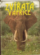Zvířata v Africe