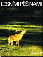 Lesními pěšinami - fot. publikace