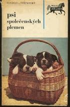 Psi společenských plemen