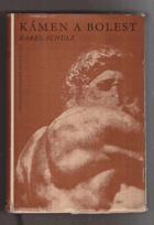 Kámen a bolest - Michelangelo Buonarroti