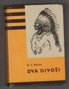 Dva divoši - O dobrodružstvích dvou chlapců, kteří žili jako Indiáni, a o tom, co všechno ...