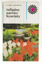 Tulipány, narcisy, hyacinty