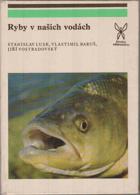 Ryby v našich vodách
